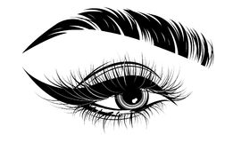 Illustration of eye makeup and brow on white background Stock Image