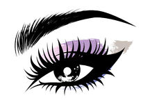Illustration of eye makeup and brow on white background. Illustration of beautiful eye makeup and brow on white background royalty free illustration