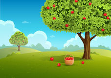 Illustration för Apple fruktträdgård Fotografering för Bildbyråer