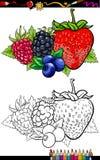 Illustration för bärfrukter för färgläggningbok stock illustrationer