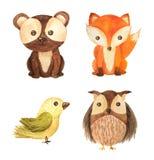 Illustration för barn för vattenfärgskog djur vektor illustrationer
