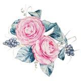 Illustration för blom- ordning för vattenfärg Royaltyfria Bilder