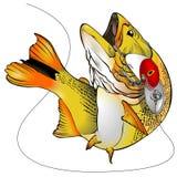 Illustration för Dorado fiskvektor stock illustrationer