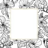 Illustration f?r f?rgpulver f?r botanisk hand f?r tappning utdragen med v?r?pplet eller den k?rsb?rsr?da blomningen Gentle inked  vektor illustrationer