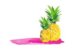 Illustration för Hello sommarananas greeting lyckligt nytt år för 2007 kort grafisk moderiktig vektorteckning Affischbaner vektor illustrationer
