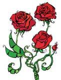 Illustration för röda rosor Royaltyfri Foto