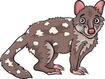 Illustration för tecknad film för tigerquoll djur Arkivfoton