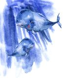 Illustration för vattenfärg för blått val för vattenfärg, nautiskt hälsa kort royaltyfri illustrationer