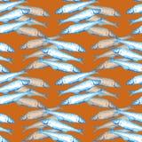 Illustration för vattenfärg för utdragen marin- sömlös modell för hand blå per gruppen av den atlantiska makrillfisken på orange  royaltyfri illustrationer