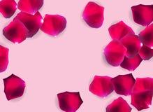Illustration för vektor för abstrakt naturlig Rose Petals nolla-bakgrund realistisk vektor illustrationer