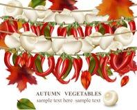 Illustration för vektor för bakgrund för peppar för för höstgrönsakchampinjon och chili realistisk Royaltyfri Bild