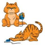 Illustration för vektor för Cat Cartoon Set Playing With datormus royaltyfri illustrationer
