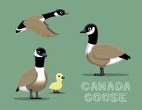 Illustration för vektor för Kanada gåstecknad film Royaltyfri Foto