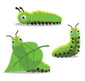 Illustration för vektor för krypCaterpillar tecknad film Fotografering för Bildbyråer