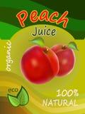 Illustration för vektor för förpackande design för persikafruktsaftmall Arkivbild