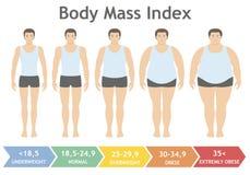 Illustration för vektor för index för kroppmass från underviktigt till extremt sjukligt fett i plan stil Man med olika fetmagrade Royaltyfri Foto
