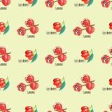 Illustration för vektor för mat för energi för teckning för sömlösa för modell för Goji bärguarana frukter för bakgrund röda diet royaltyfri illustrationer