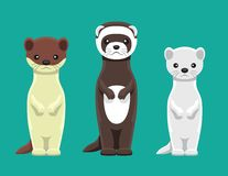 Illustration för vesslaMink Ferret Doll Set Cartoon vektor Arkivfoton