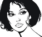 Illustration of the face of a beautiful woman Stock Photography