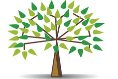 Illustration of family tree design royalty free illustration
