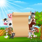 Farm animals with a blank sign paper roll up. Illustration of Farm animals with a blank sign paper roll up Stock Images