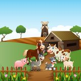 Farm animals at cage background Royalty Free Stock Photos