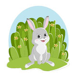 Illustration featuring a hare sitting on the grass background with flowers. Royalty Free Stock Photo