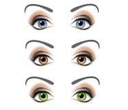 Illustration femelle de yeux humains Photos stock
