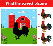 Find the correct picture, education game for children. Rooster in the farm. Illustration of Find the correct picture, education game for children. Rooster in the Stock Images