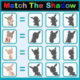 Find the correct shadow of the rabbit. Illustration of Find the correct shadow of the rabbit Stock Photography