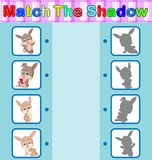 Find the correct shadow of the rabbit. Illustration of Find the correct shadow of the rabbit Royalty Free Stock Image