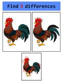 Find 5 differences Rooster. Illustration of Find 5 differences Rooster Stock Photo
