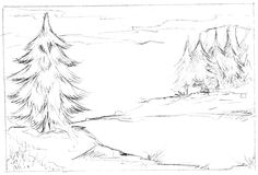 Illustration of fir trees. In black pencil on white Stock Photos