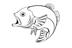 Illustration of a fish. Black and white illustration of a fish stock illustration