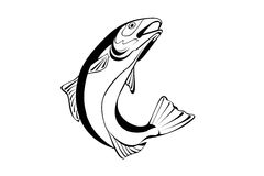 Illustration of a fish. Black and white illustration of a fish royalty free illustration