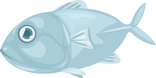 Illustration fish Stock Image