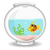 Illustration of Fish Bowl. Vector Illustration of Fish Bowl Stock Photo