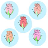 Illustration of five roses in delicate blue medallions Stock Photo