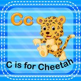 Flashcard letter C is for cheetah Stock Images