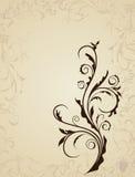 Illustration floral background Royalty Free Stock Images