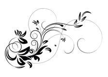 Illustration florale de vecteur illustration de vecteur