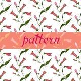 Illustration florale de vecteur de beau modèle floral sans couture illustration de vecteur