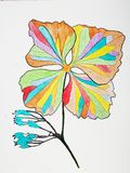 Illustration florale sur le blanc Photo stock