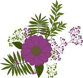 Illustration flower bouquet, aster, dahlia purple. stock illustration