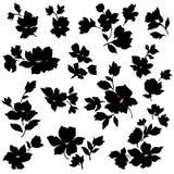 Illustration of flower Royalty Free Stock Image