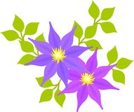 The illustration of flower Royalty Free Stock Image