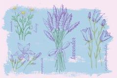 Illustration of flower Stock Photo