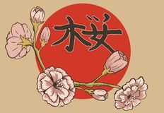 Illustration of flowering branch of sakura. Stock Photos