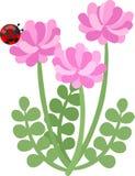 Illustration of flowers a ladybug Royalty Free Stock Images
