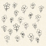 Illustration of flowers on a sheet of lined paper Stock Photo